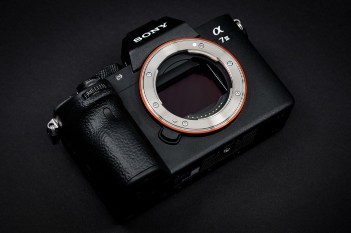 Why I chose the A7iii over Canon and Nikon